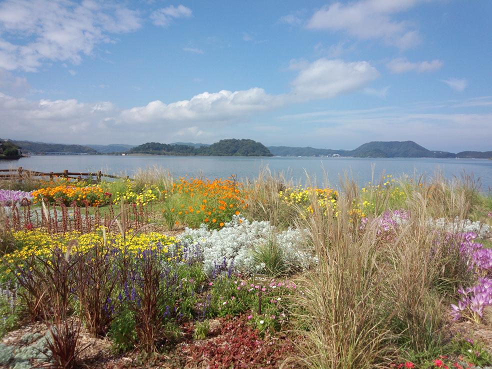 千代川水系湖山池