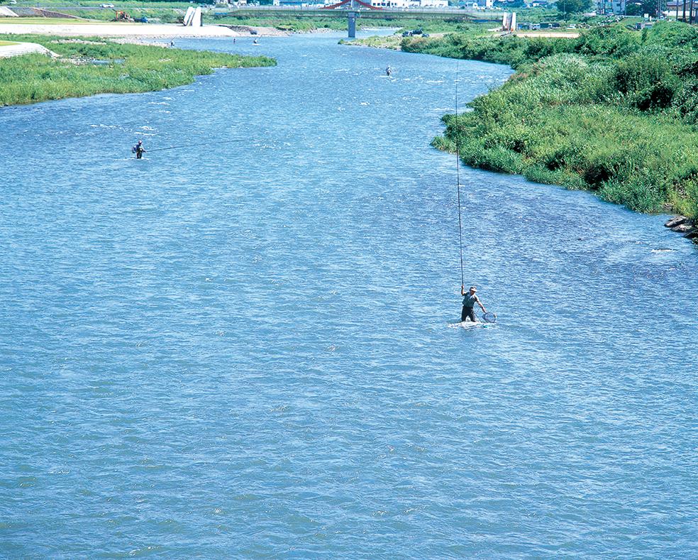 九頭竜川水系日野川
