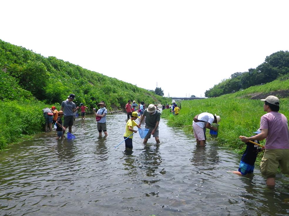淀川水系芥川