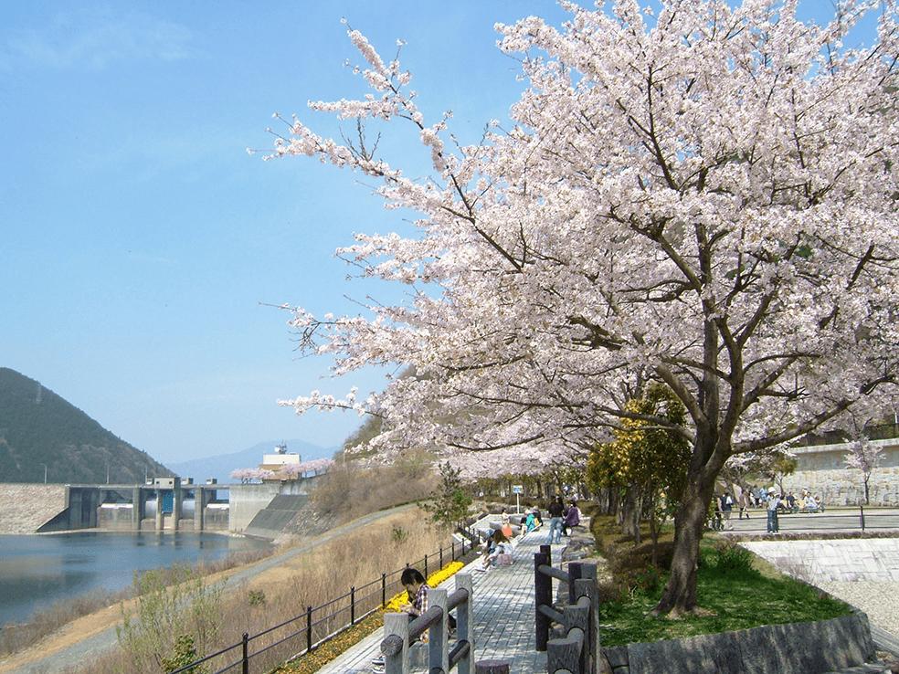 木曽川水系阿木川