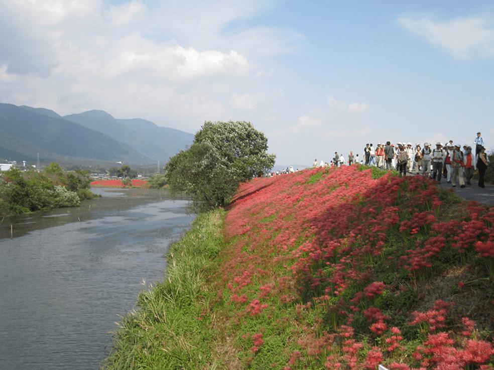 木曽川(揖斐川)水系津屋川
