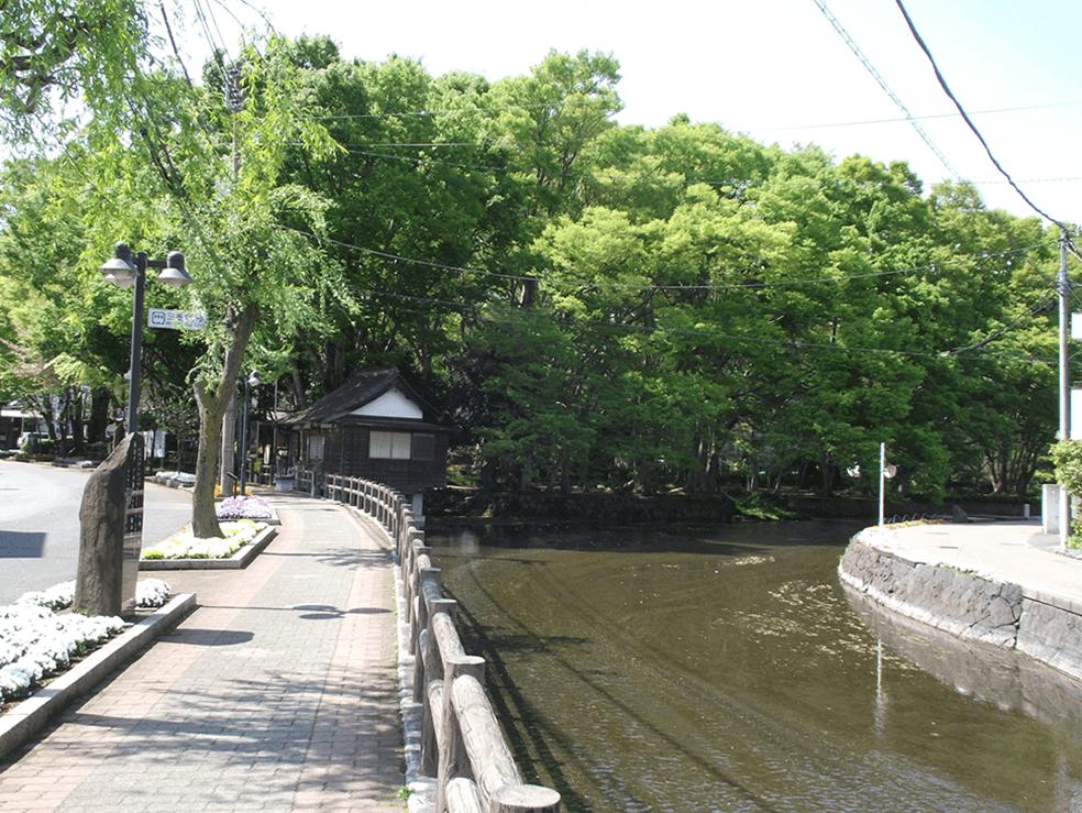 狩野川水系白滝公園