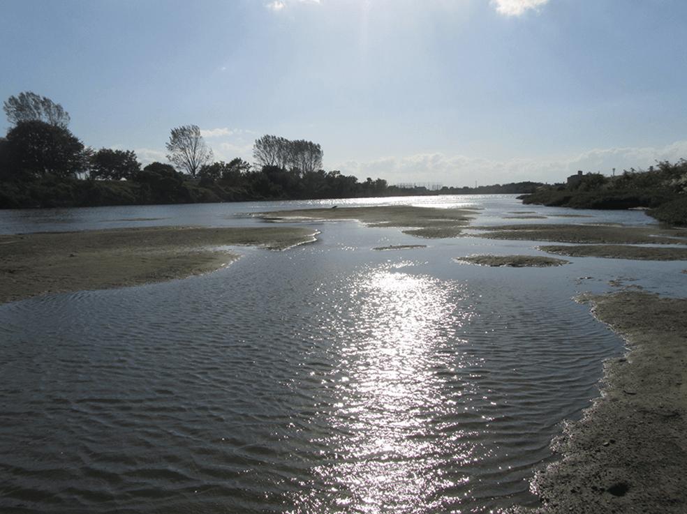 庄内川水系庄内川