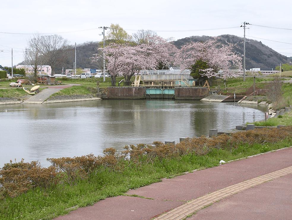 北上川水系旧北上川