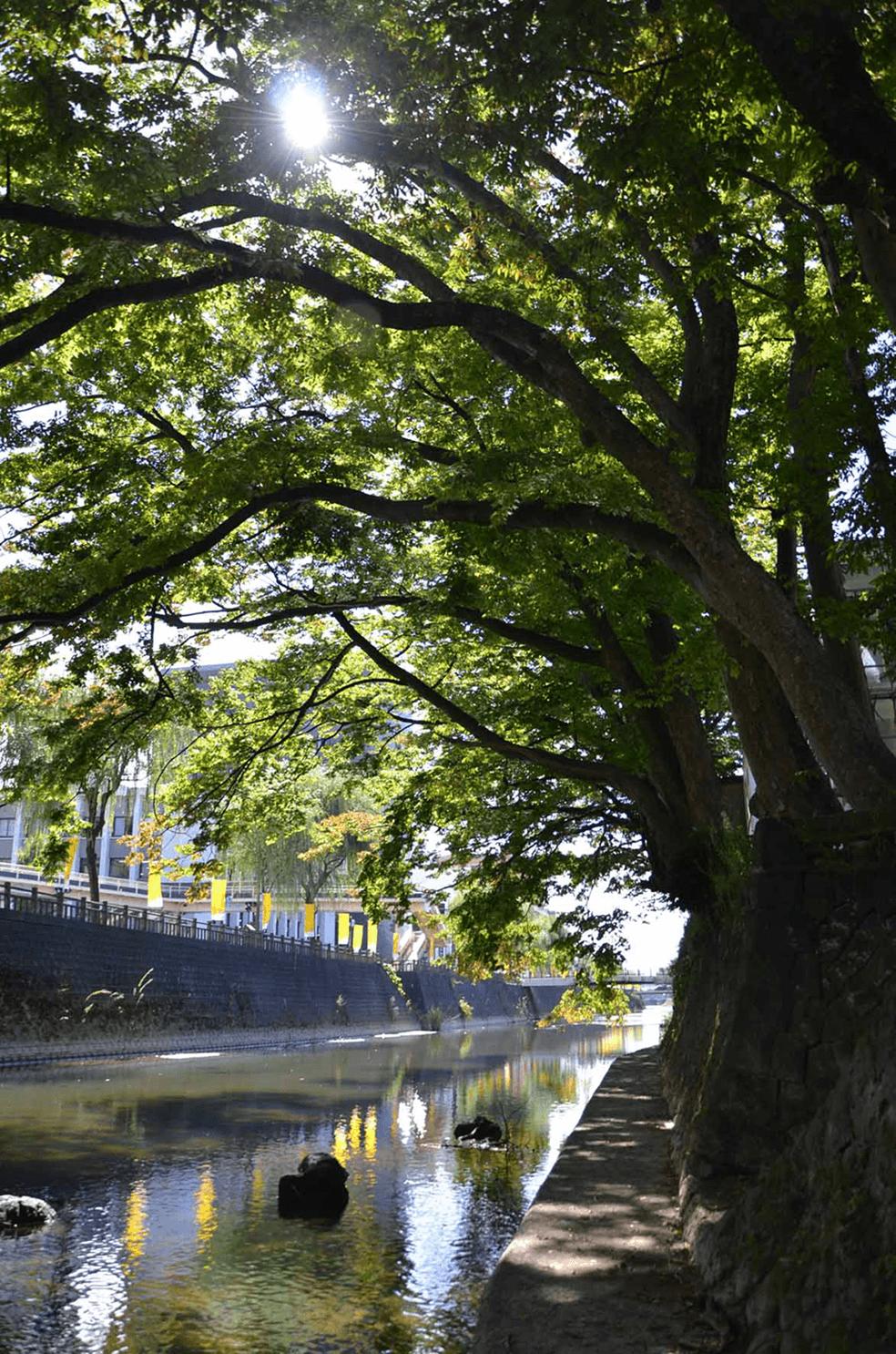 雄物川水系旭川