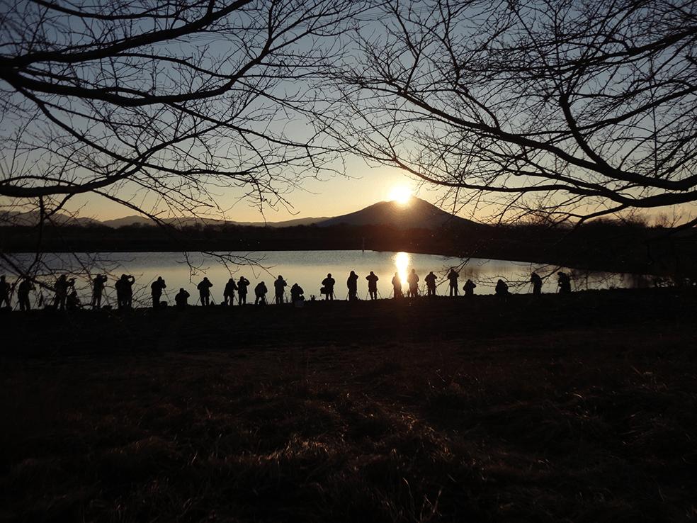 利根川水系母子島遊水地(小貝川)