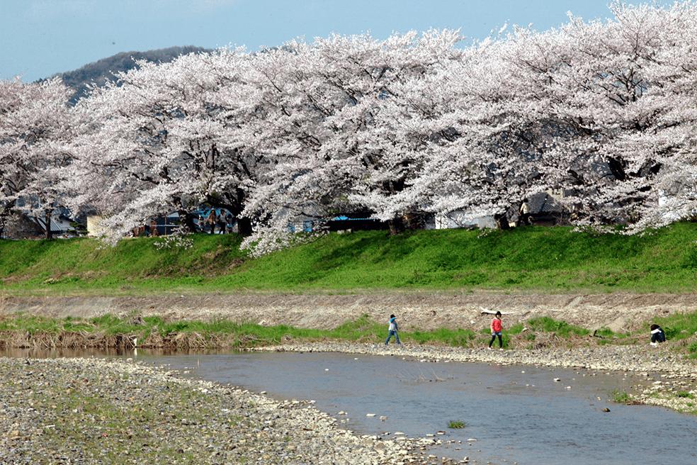 利根川水系永野川