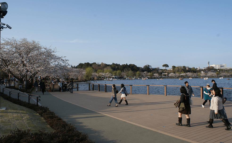 那珂川水系千波湖