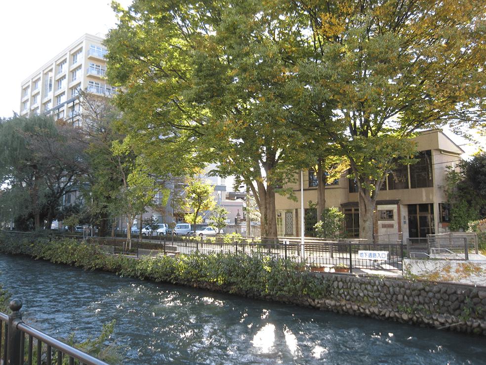 利根川水系広瀬川