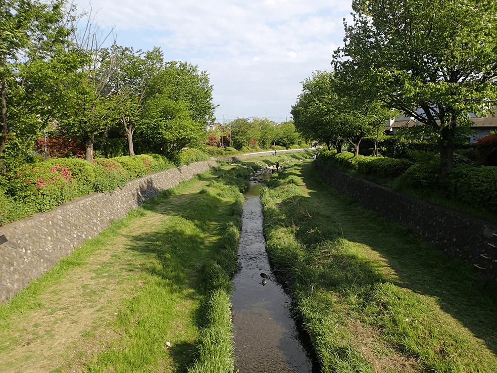 多摩川水系野川