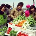 ボートと野菜が東京を救う??BO菜とは