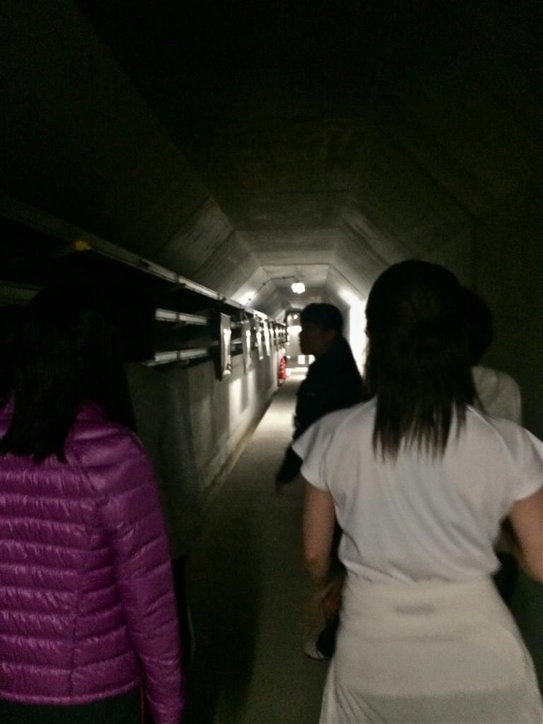 真っ暗でひんやりした通路を歩きながら「遊園地のアトラクションみたいだね」とわくわくする人も。
