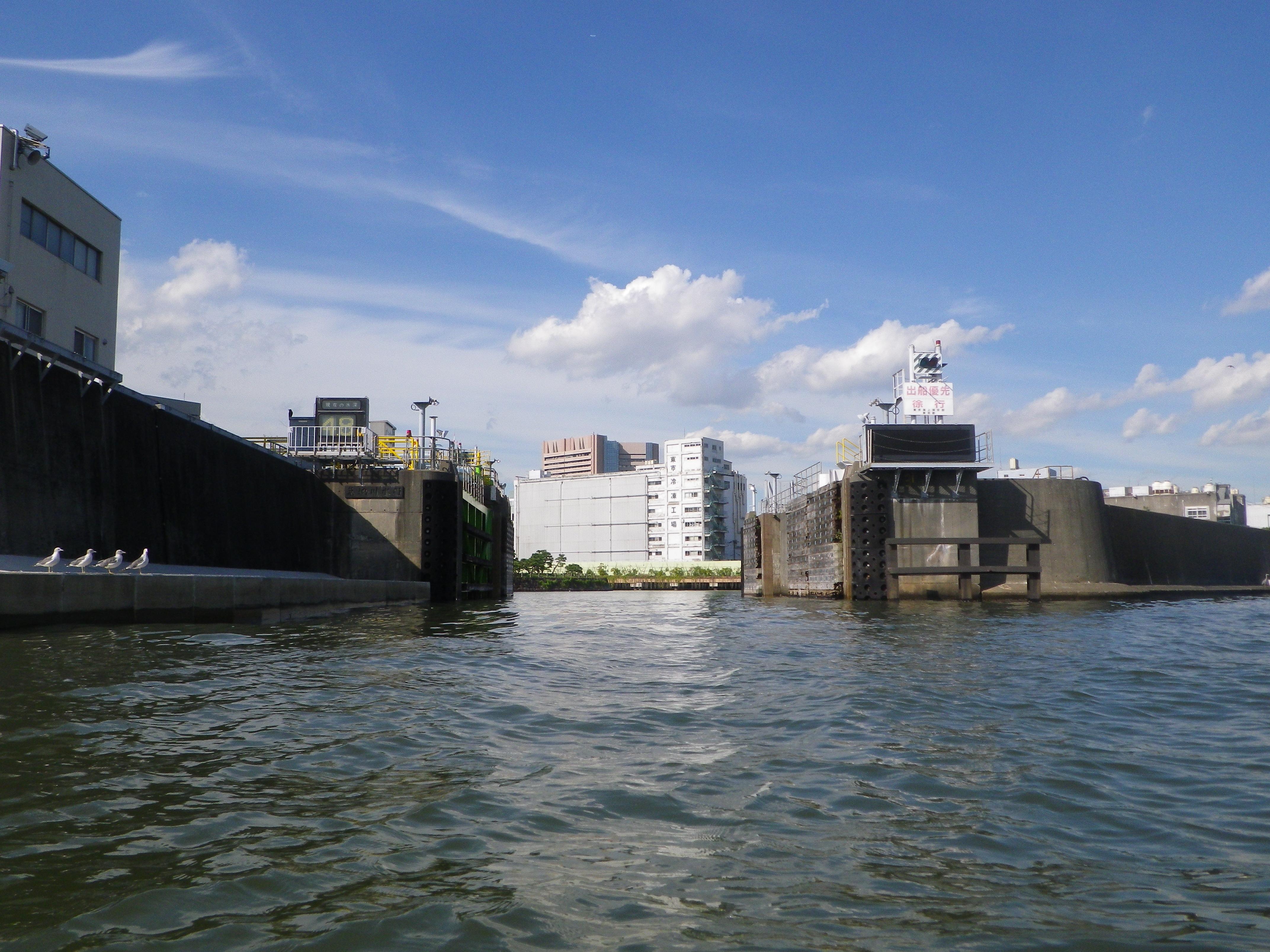 d東京防潮堤と水門