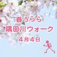 官民連携プロジェクト第2弾<br>「春うらら、隅田川ウォーク」開催