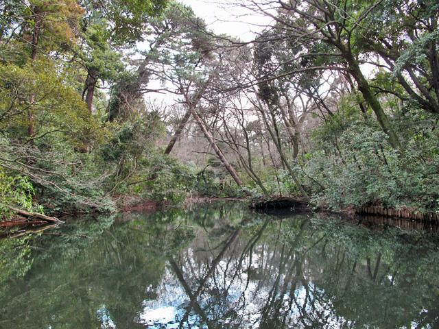 12_白金ひょうたん池