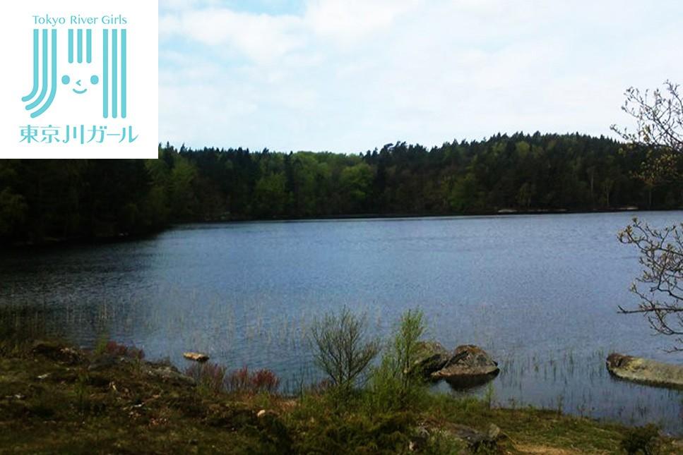 スウェーデンの湖のほとりの1年間